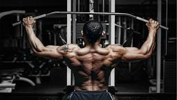 تجهیزات بدنسازی shoulder workout 1